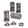 SPRK-TS1015-Z20 Dual valve spring kit OPC Z20