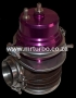WG012 50mm Wastegate